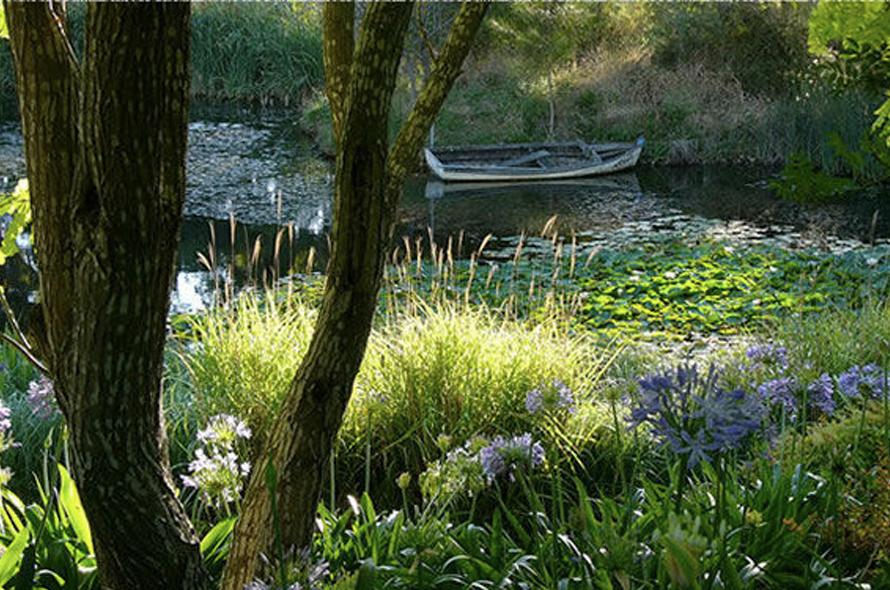 Amaroo Water Gardens