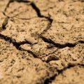featured image Previsión para la Primavera: La Desagradable Sequía se Agrava en Gran Parte de EE.UU.